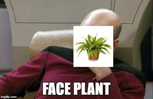 Captain Picard Facepalm Meme | FACE PLANT | image tagged in memes,captain picard facepalm | made w/ Imgflip meme maker