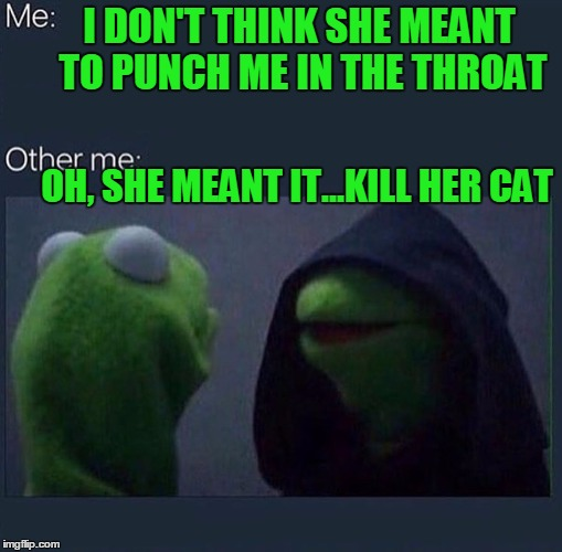 I DON'T THINK SHE MEANT TO PUNCH ME IN THE THROAT OH, SHE MEANT IT...KILL HER CAT | made w/ Imgflip meme maker