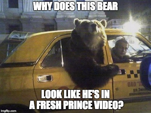 The Fresh Prince of all Bears | WHY DOES THIS BEAR LOOK LIKE HE'S IN A FRESH PRINCE VIDEO? | image tagged in bear taxi,funny,funny memes,memes | made w/ Imgflip meme maker