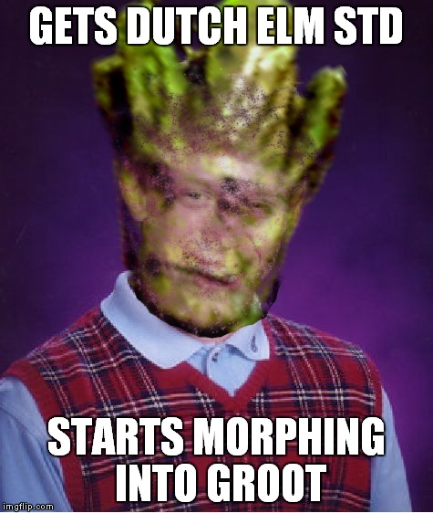 GETS DUTCH ELM STD STARTS MORPHING INTO GROOT | made w/ Imgflip meme maker