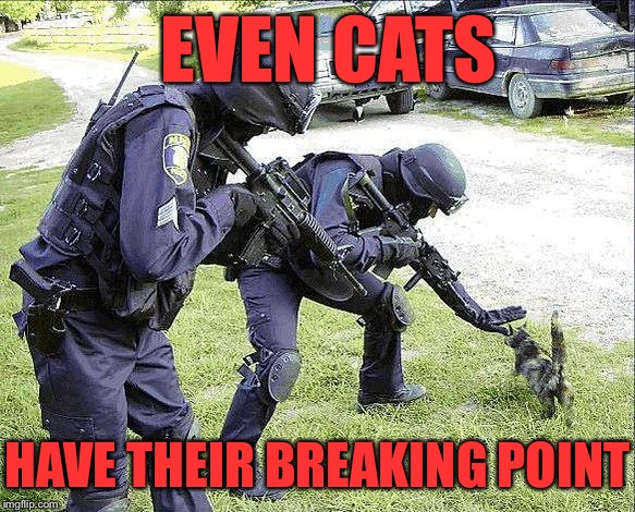 EVEN CATS HAVE THEIR BREAKING POINT | made w/ Imgflip meme maker