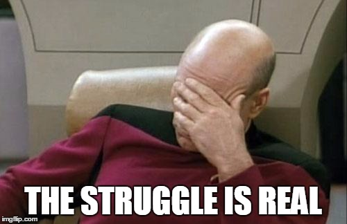 Captain Picard Facepalm Meme | THE STRUGGLE IS REAL | image tagged in memes,captain picard facepalm | made w/ Imgflip meme maker