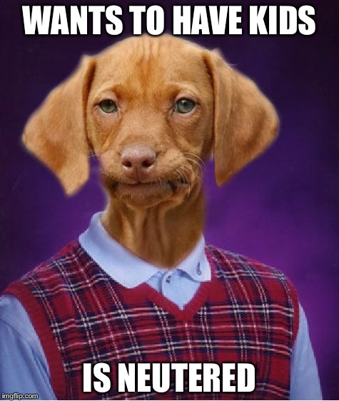 Bad Luck Raydog |  WANTS TO HAVE KIDS; IS NEUTERED | image tagged in bad luck raydog | made w/ Imgflip meme maker