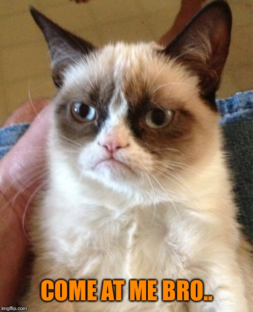 Grumpy Cat Meme | COME AT ME BRO.. | image tagged in memes,grumpy cat | made w/ Imgflip meme maker