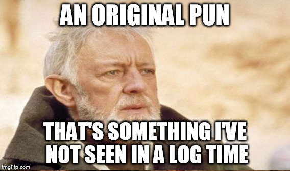 AN ORIGINAL PUN THAT'S SOMETHING I'VE NOT SEEN IN A LOG TIME | made w/ Imgflip meme maker