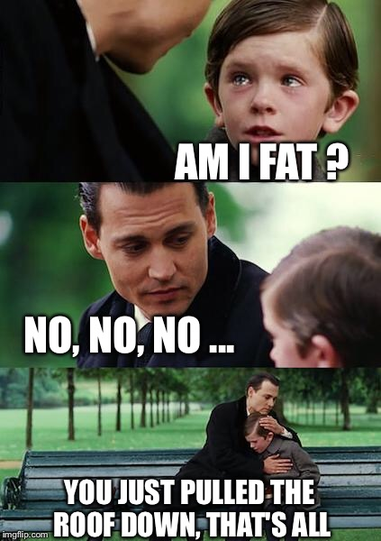 Finding Neverland Meme | AM I FAT ? NO, NO, NO ... YOU JUST PULLED THE ROOF DOWN, THAT'S ALL | image tagged in memes,finding neverland | made w/ Imgflip meme maker