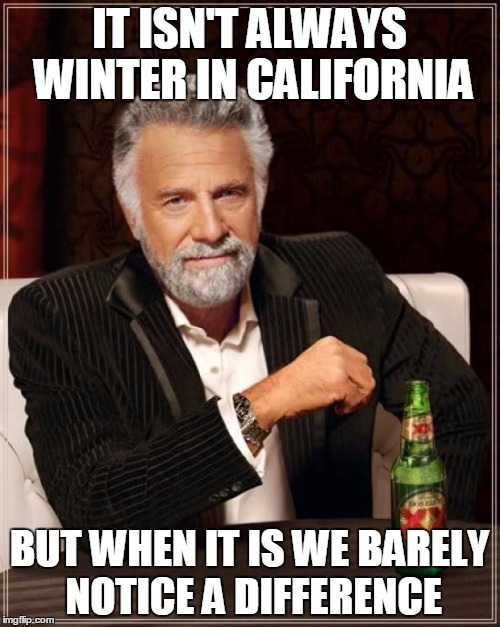 The Most Interesting Man In The World Meme | IT ISN'T ALWAYS WINTER IN CALIFORNIA BUT WHEN IT IS WE BARELY NOTICE A DIFFERENCE | image tagged in memes,the most interesting man in the world | made w/ Imgflip meme maker