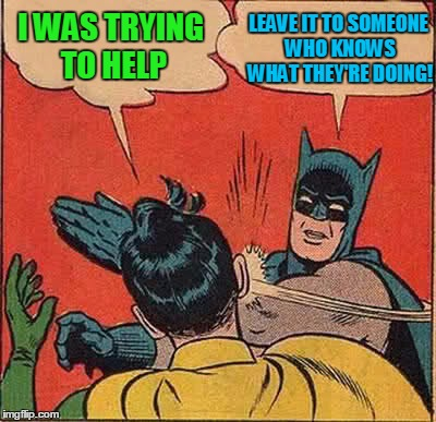 Batman Slapping Robin Meme | I WAS TRYING TO HELP LEAVE IT TO SOMEONE WHO KNOWS WHAT THEY'RE DOING! | image tagged in memes,batman slapping robin | made w/ Imgflip meme maker