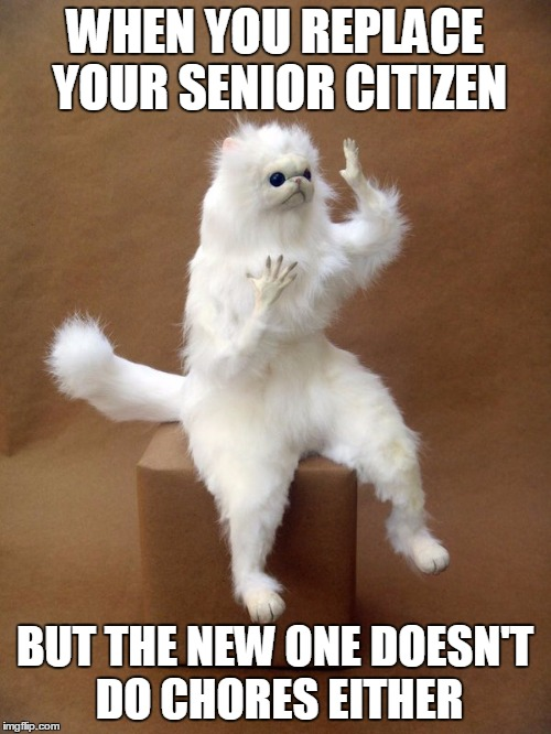 WHEN YOU REPLACE YOUR SENIOR CITIZEN BUT THE NEW ONE DOESN'T DO CHORES EITHER | made w/ Imgflip meme maker