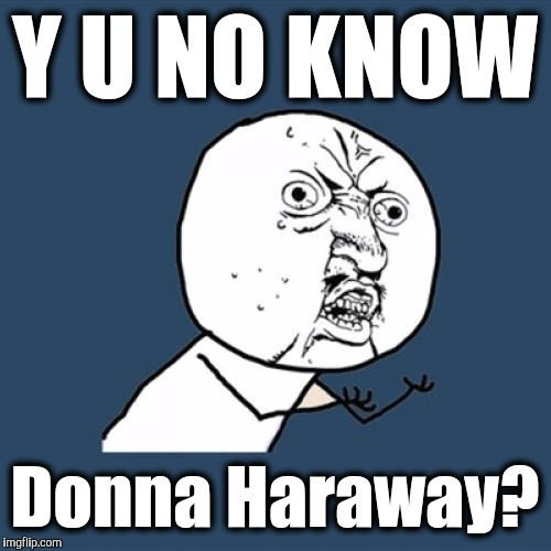 Y U No....Know Donna Haraway. | Y U NO KNOW Donna Haraway? | image tagged in memes,y u no,red team cyborg anthropology,terminator possible replys,the most interesting towel in the world,kevin and bean | made w/ Imgflip meme maker