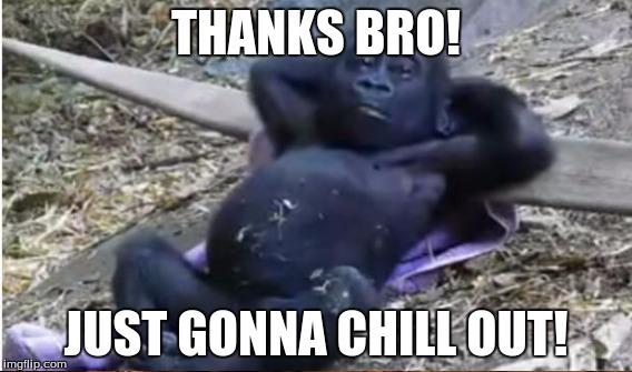 THANKS BRO! JUST GONNA CHILL OUT! | made w/ Imgflip meme maker