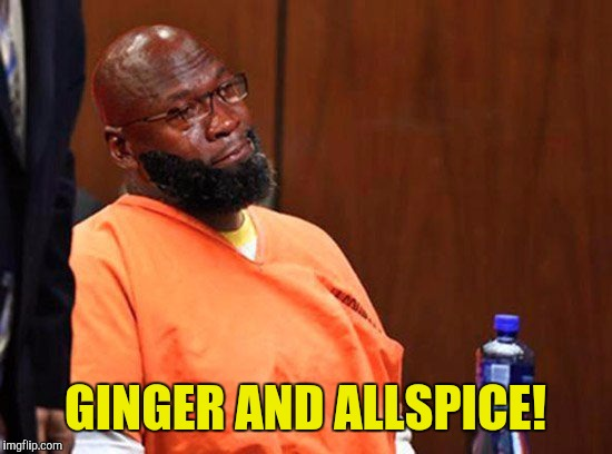 GINGER AND ALLSPICE! | made w/ Imgflip meme maker