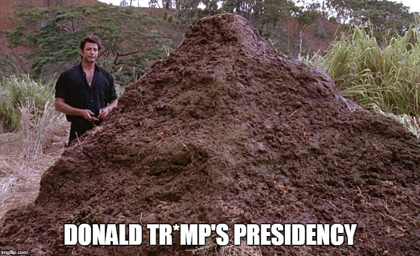 DONALD TR*MP'S PRESIDENCY | image tagged in one big pile of shit | made w/ Imgflip meme maker