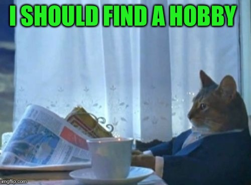 Ohhh look a meme site, this will be a great way to waste a few hours...JUST A FEW... | I SHOULD FIND A HOBBY | image tagged in memes,i should buy a boat cat | made w/ Imgflip meme maker