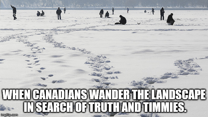 Canadians Wander | WHEN CANADIANS WANDER THE LANDSCAPE IN SEARCH OF TRUTH AND TIMMIES. | image tagged in tim hortons,canada,1st world canadian problems | made w/ Imgflip meme maker