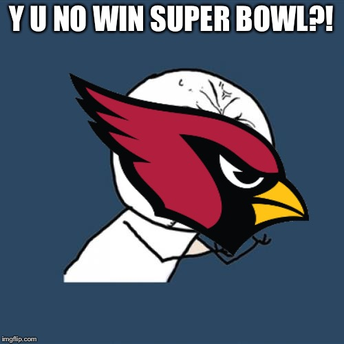 Y U NO WIN SUPER BOWL?! | image tagged in cardinals | made w/ Imgflip meme maker