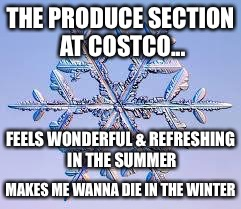 Snowflake | THE PRODUCE SECTION AT COSTCO... MAKES ME WANNA DIE IN THE WINTER FEELS WONDERFUL & REFRESHING IN THE SUMMER | image tagged in snowflake | made w/ Imgflip meme maker