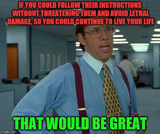 That Would Be Great Meme | IF YOU COULD FOLLOW THEIR INSTRUCTIONS WITHOUT THREATENING THEM AND AVOID LETHAL DAMAGE, SO YOU COULD CONTINUE TO LIVE YOUR LIFE THAT WOULD  | image tagged in memes,that would be great | made w/ Imgflip meme maker