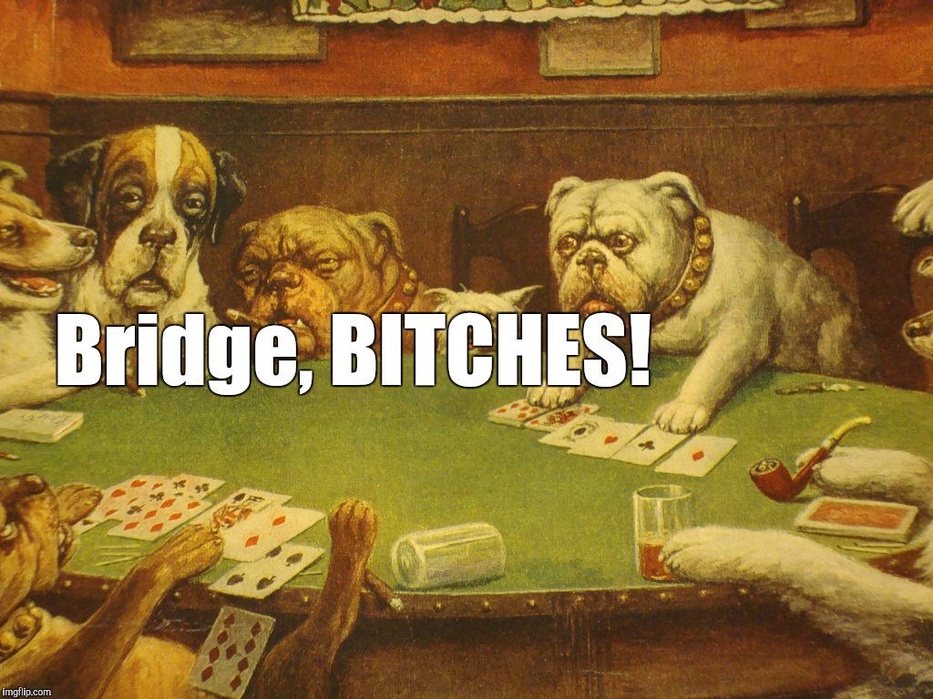 Bridge, B**CHES! | made w/ Imgflip meme maker