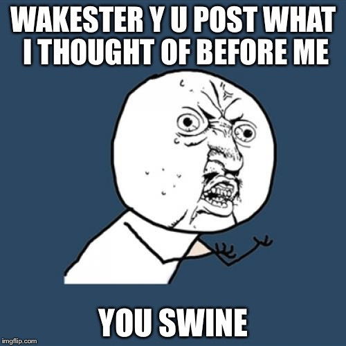 Y U No Meme | WAKESTER Y U POST WHAT I THOUGHT OF BEFORE ME YOU SWINE | image tagged in memes,y u no | made w/ Imgflip meme maker