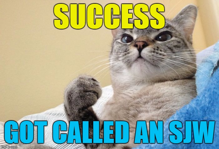 Success Cat #1 | SUCCESS GOT CALLED AN SJW | image tagged in success cat 1 | made w/ Imgflip meme maker