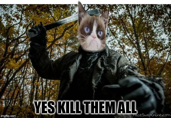grumpy cat jason | YES KILL THEM ALL | image tagged in grumpy cat jason | made w/ Imgflip meme maker