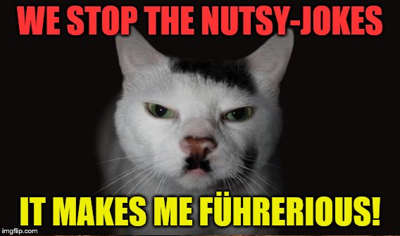 WE STOP THE NUTSY-JOKES IT MAKES ME FÜHRERIOUS! | made w/ Imgflip meme maker