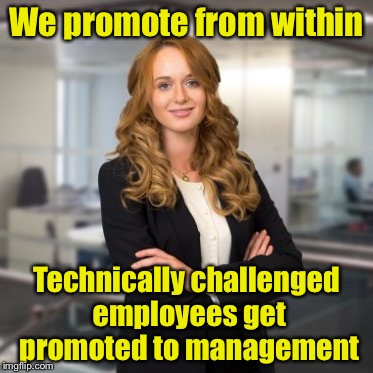 And totally incompetent employees get promoted to Project Management | We promote from within Technically challenged employees get promoted to management | image tagged in successful business woman,management | made w/ Imgflip meme maker