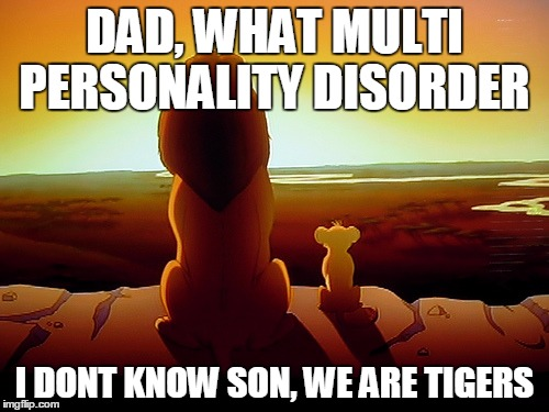 Lion King Meme | DAD, WHAT MULTI PERSONALITY DISORDER I DONT KNOW SON, WE ARE TIGERS | image tagged in memes,lion king | made w/ Imgflip meme maker