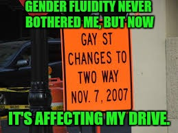 It's gettin' outta hand now,... | GENDER FLUIDITY NEVER BOTHERED ME, BUT NOW IT'S AFFECTING MY DRIVE. | image tagged in sewmyeyesshut,funny memes,gender confusion,funny street signs | made w/ Imgflip meme maker