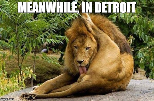 Detroit Lions post-season | MEANWHILE, IN DETROIT | image tagged in lion licking balls,detroit lions | made w/ Imgflip meme maker