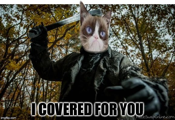 grumpy cat jason | I COVERED FOR YOU | image tagged in grumpy cat jason | made w/ Imgflip meme maker