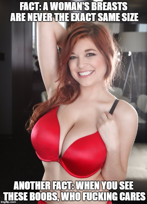 Tessa Fowler boobs | FACT: A WOMAN'S BREASTS ARE NEVER THE EXACT SAME SIZE ANOTHER FACT: WHEN YOU SEE THESE BOOBS, WHO F**KING CARES | image tagged in tessa fowler boobs,sexy woman,big tits | made w/ Imgflip meme maker