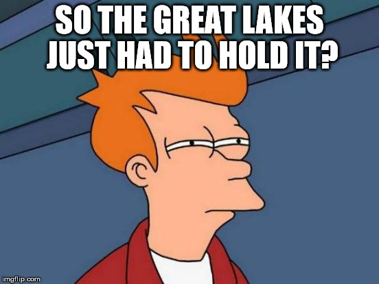 Futurama Fry Meme | SO THE GREAT LAKES JUST HAD TO HOLD IT? | image tagged in memes,futurama fry | made w/ Imgflip meme maker