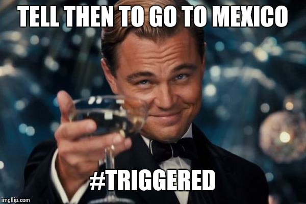 Leonardo Dicaprio Cheers Meme | TELL THEN TO GO TO MEXICO #TRIGGERED | image tagged in memes,leonardo dicaprio cheers | made w/ Imgflip meme maker