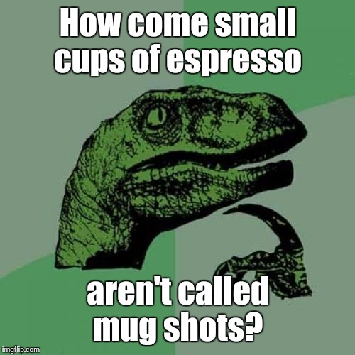 Philosoraptor Meme | How come small cups of espresso aren't called mug shots? | image tagged in memes,philosoraptor | made w/ Imgflip meme maker