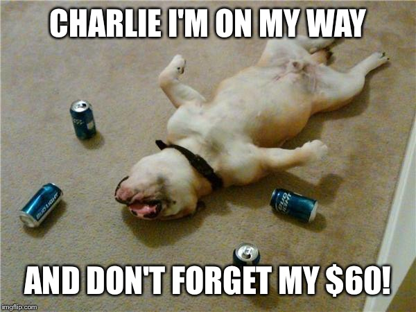 drunk dog |  CHARLIE I'M ON MY WAY; AND DON'T FORGET MY $60! | image tagged in drunk dog | made w/ Imgflip meme maker
