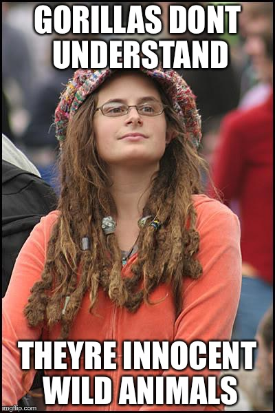 Libturd | GORILLAS DONT UNDERSTAND THEYRE INNOCENT WILD ANIMALS | image tagged in libturd | made w/ Imgflip meme maker