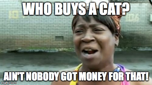 Aint Nobody Got Time For That Meme | WHO BUYS A CAT? AIN'T NOBODY GOT MONEY FOR THAT! | image tagged in memes,aint nobody got time for that | made w/ Imgflip meme maker
