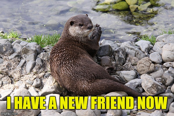 I HAVE A NEW FRIEND NOW | made w/ Imgflip meme maker
