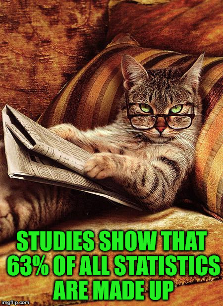 63% Of All Statistics Are Made Up | STUDIES SHOW THAT 63% OF ALL STATISTICS ARE MADE UP | image tagged in cat reading,statistics,cats,animals,go cowboys,memes | made w/ Imgflip meme maker
