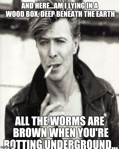 AND HERE...AM I LYING IN A WOOD BOX, DEEP BENEATH THE EARTH ALL THE WORMS ARE BROWN WHEN YOU'RE ROTTING UNDERGROUND... | made w/ Imgflip meme maker