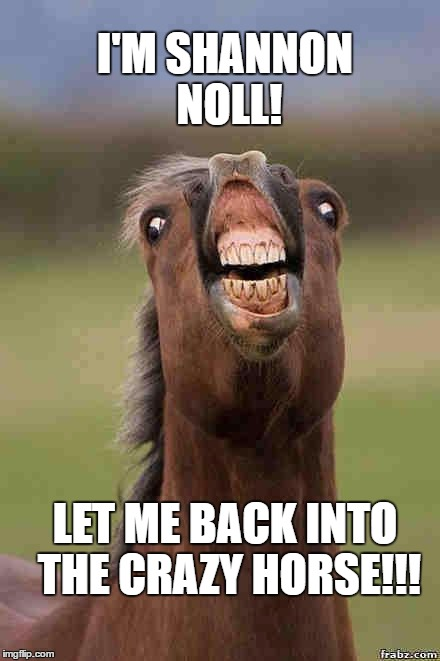 I'm Shannon Noll. Let me back into the Crazy Horse! |  I'M SHANNON NOLL! LET ME BACK INTO THE CRAZY HORSE!!! | image tagged in horse face,australian idol,shannon noll,crazy horse,meanwhile in australia,strip club | made w/ Imgflip meme maker