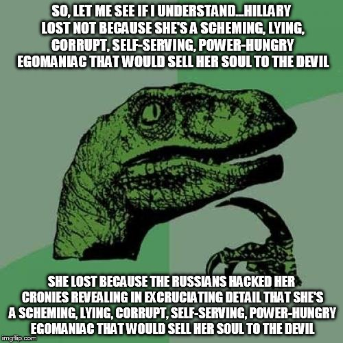 Philosoraptor Meme | SO, LET ME SEE IF I UNDERSTAND...HILLARY LOST NOT BECAUSE SHE'S A SCHEMING, LYING, CORRUPT, SELF-SERVING, POWER-HUNGRY EGOMANIAC THAT WOULD  | image tagged in memes,philosoraptor | made w/ Imgflip meme maker