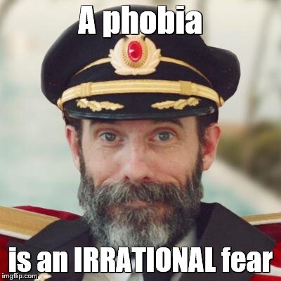captain obvious | A phobia is an IRRATIONAL fear | image tagged in captain obvious | made w/ Imgflip meme maker