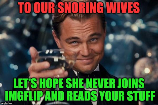 Leonardo Dicaprio Cheers Meme | TO OUR SNORING WIVES LET'S HOPE SHE NEVER JOINS IMGFLIP AND READS YOUR STUFF | image tagged in memes,leonardo dicaprio cheers | made w/ Imgflip meme maker