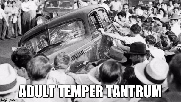 riot in the 1940's | ADULT TEMPER TANTRUM | image tagged in riot in the 1940's | made w/ Imgflip meme maker
