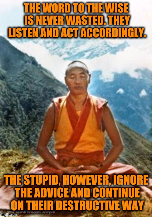 THE WORD TO THE WISE IS NEVER WASTED. THEY LISTEN AND ACT ACCORDINGLY. THE STUPID, HOWEVER, IGNORE THE ADVICE AND CONTINUE ON THEIR DESTRUCT | made w/ Imgflip meme maker