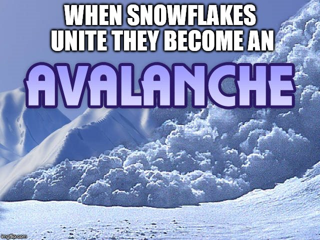 We are the Avalanche | WHEN SNOWFLAKES UNITE THEY BECOME AN | image tagged in avalanche,snowflake | made w/ Imgflip meme maker