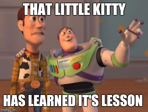 X, X Everywhere Meme | THAT LITTLE KITTY HAS LEARNED IT'S LESSON | image tagged in memes,x,x everywhere,x x everywhere | made w/ Imgflip meme maker